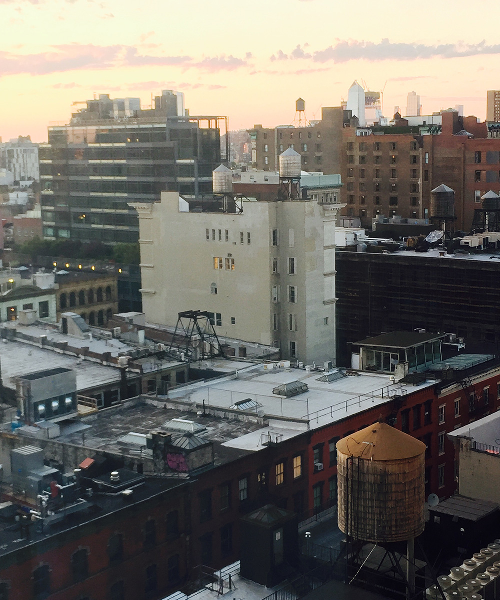 the roof tops of New York